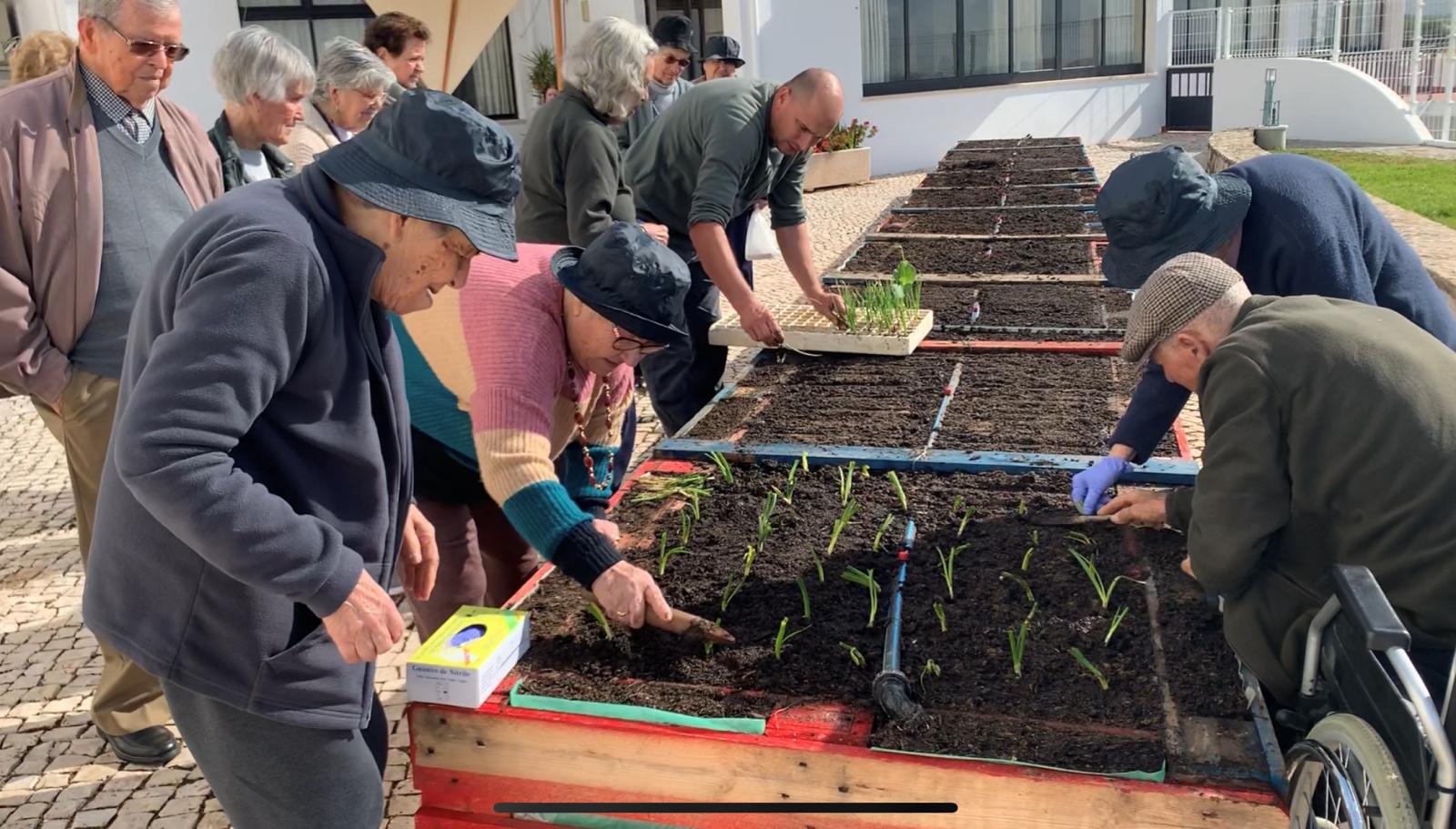 Boliqueime | 'Cultivar a terra faz parte da vida deles'