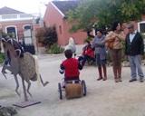 Golegã | Misericórdia na Feira Nacional do Cavalo