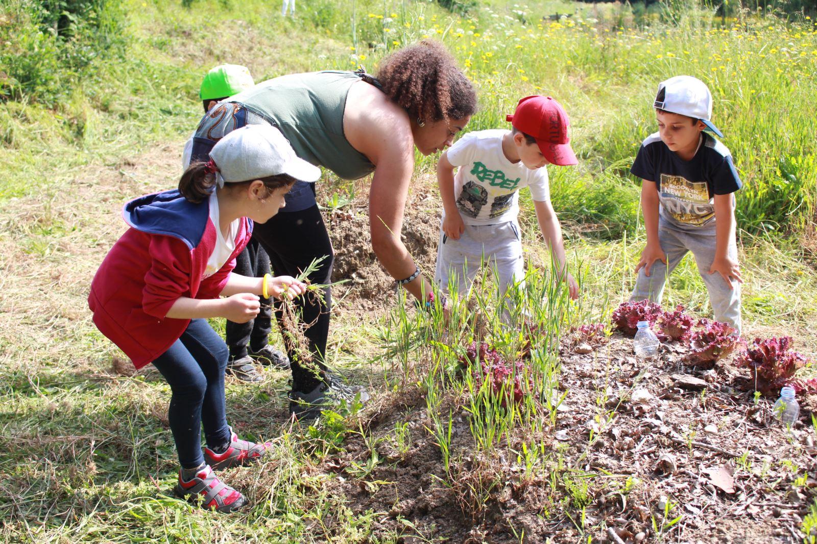 Aveiro | Aventuras para educar sobre o meio ambiente