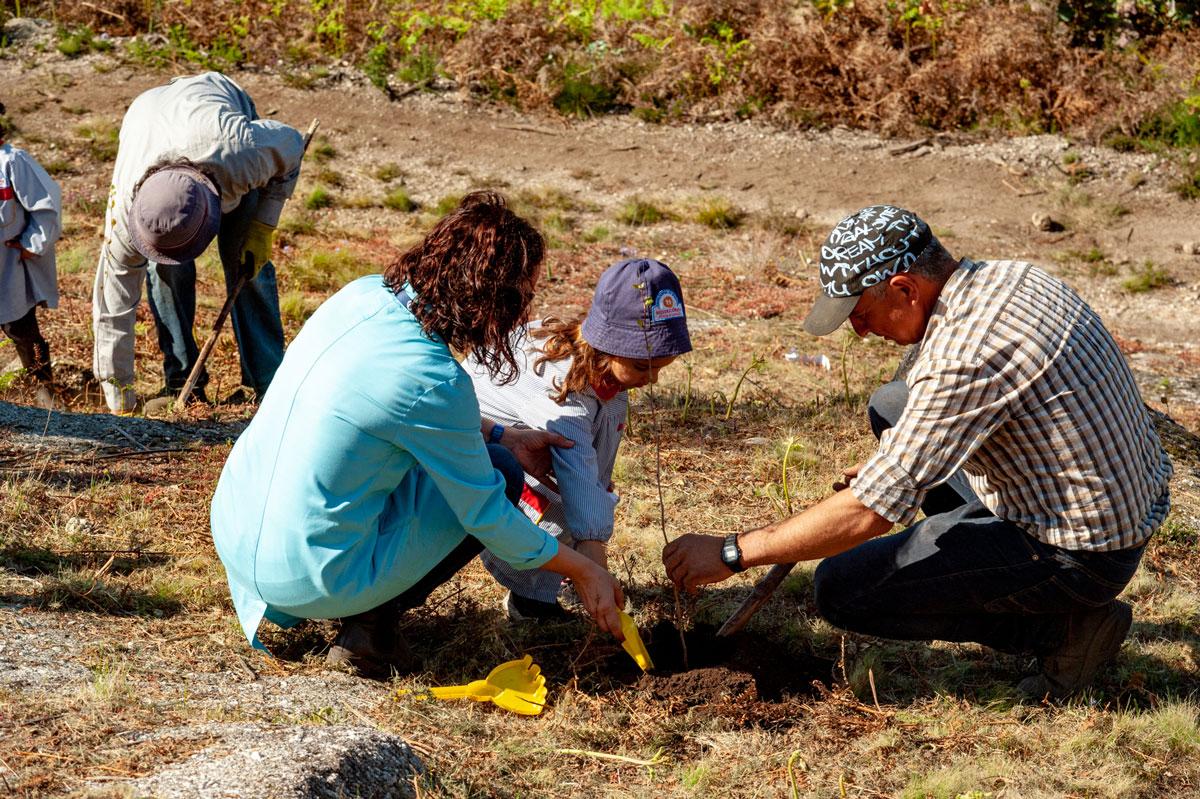 Póvoa de Lanhoso | Crianças ajudam a plantar 120 árvores