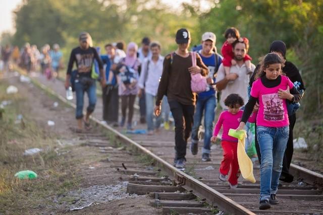 Refugiados | UMP e SEF assinam memorando de entendimento
